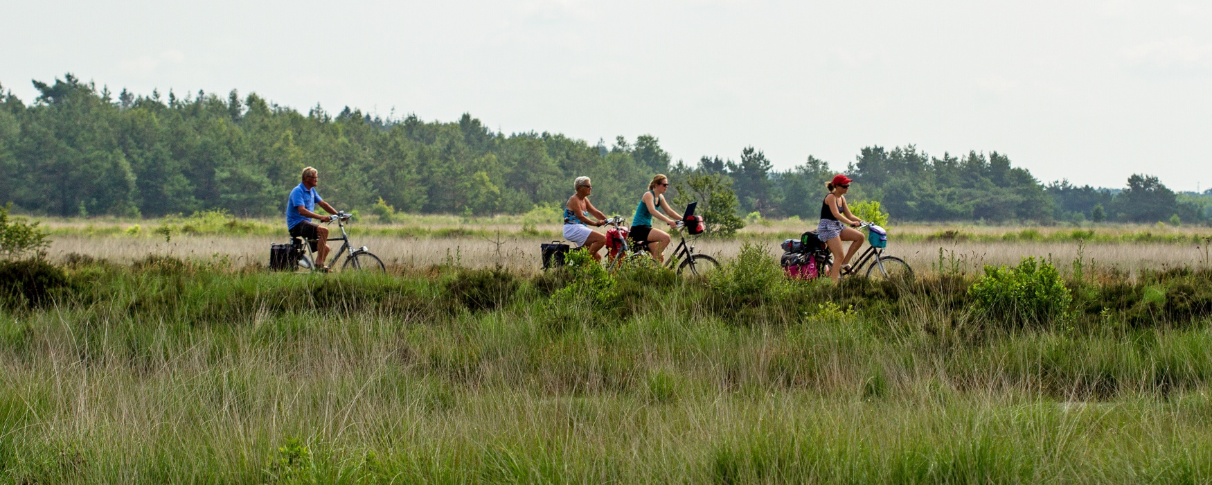 3 Provinciën Fiets-3-daagse vanuit Bakkeveen: Friesland | Drenthe | Groningen